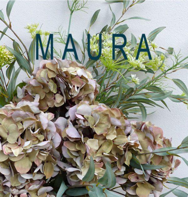 MAURA website thumbnail