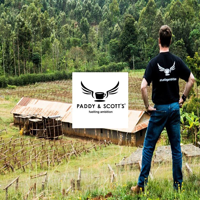 Paddy & Scott's - Coffee Tree Meru Farm