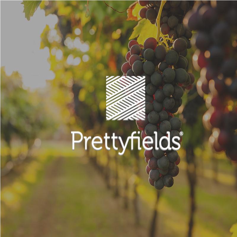 Prettyfields Vineyard